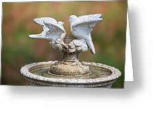 Bird Bath Greeting Card