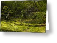 Bird By Bridge In Forest Merged Image Greeting Card