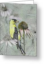 Bird Eating Seeds For One Digital Art Greeting Card