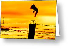 Bird Flying Off From Prison Fence Greeting Card