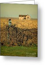 Bird House And Farm Greeting Card