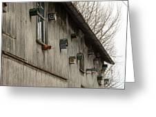 Bird Houses Greeting Card