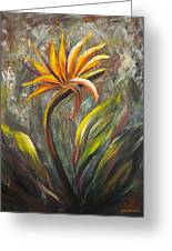 Bird Of Paradise 63 Greeting Card