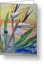 Bird Of Paradise Greeting Card by Karen Carnow