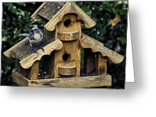 Bird On A House Greeting Card