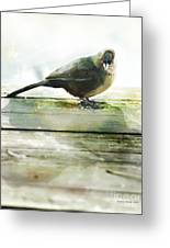Bird On The Deck Greeting Card by Artist and Photographer Laura Wrede