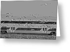 Bird Train Alviso 2 Greeting Card