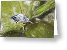 Bird Whirl Greeting Card