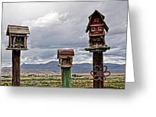Birdhouses Greeting Card