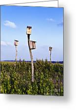 Birdhouses In Salt Marsh. Greeting Card