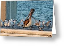 Birds - Among Friends Greeting Card