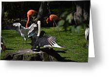Birds Gather Greeting Card