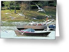 Birds In Flight At The Lake Greeting Card