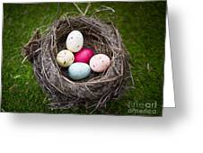Bird's Nest With Easter Eggs Greeting Card