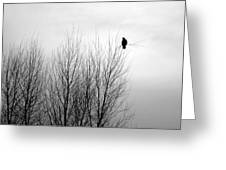 Birds Of Winter I Greeting Card