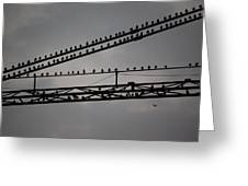 Birds On Crane Greeting Card