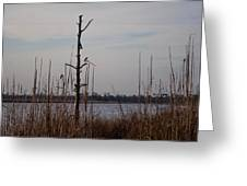 Birds On The River Greeting Card