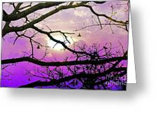 Birds Roosting For Night Greeting Card