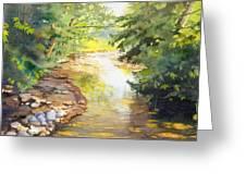 Bird's Trail Creek Greeting Card