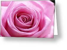 Birthday Pink Greeting Card