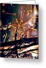 Birthed From Fire Greeting Card by Rory Sagner