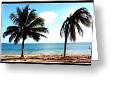 Biscayne Bay Florida Greeting Card