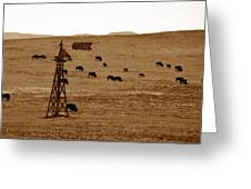 Bison And Windmill Greeting Card