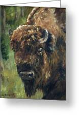 Bison Study - Zero Three Greeting Card