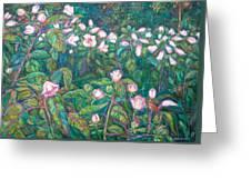 Bisset Park Hibiscus Greeting Card
