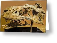 Bistahieversor Dinosaur Skull Fossil Greeting Card