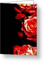 Black And Rose Greeting Card