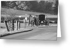 Black And White Amish Horse And Buggy Greeting Card