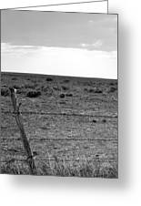 Black And White Fence  Greeting Card