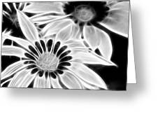 Black And White Florals Greeting Card