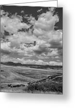 Black And White High Desert Cumulus Greeting Card