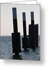 Black And White Poles On Water Greeting Card