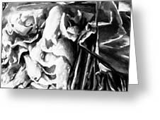 Black And White Ruffles Greeting Card