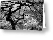 Black And White Tree Art Greeting Card