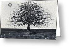 Black And White Snow Cold Winter Tree Greeting Card