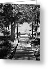 Black And White Walkway Greeting Card