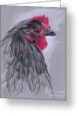 Black Australorp Hen Greeting Card