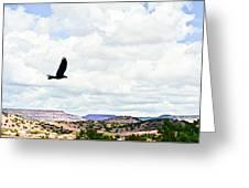 Black Bird In Flight Greeting Card