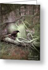 Black Bird In Forgotten Graveyard Greeting Card