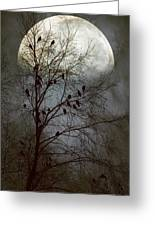 Black Birds Singing In The Dead Of Night Greeting Card