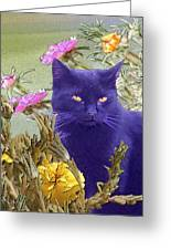 Black Cat Lurking In The Portulaca Greeting Card