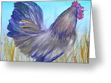Black Copper Maran Rooster Greeting Card