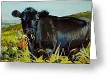 Black Cow Dartmoor Greeting Card