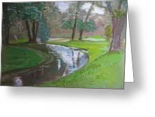Black Hancza River Greeting Card
