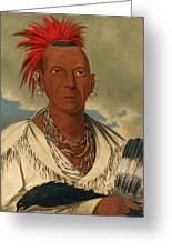 Black Hawk. Prominent Sauk Chief. Sauk And Fox Greeting Card