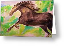 Black Horse Greeting Card